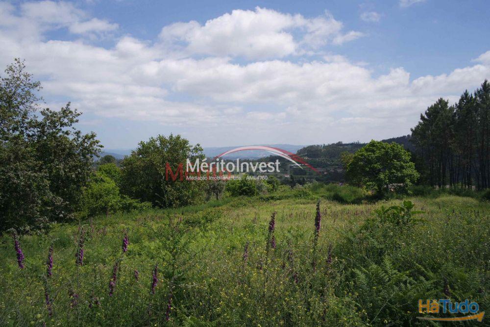 Terreno com 41.000m2 em Dossãos - Vila Verde