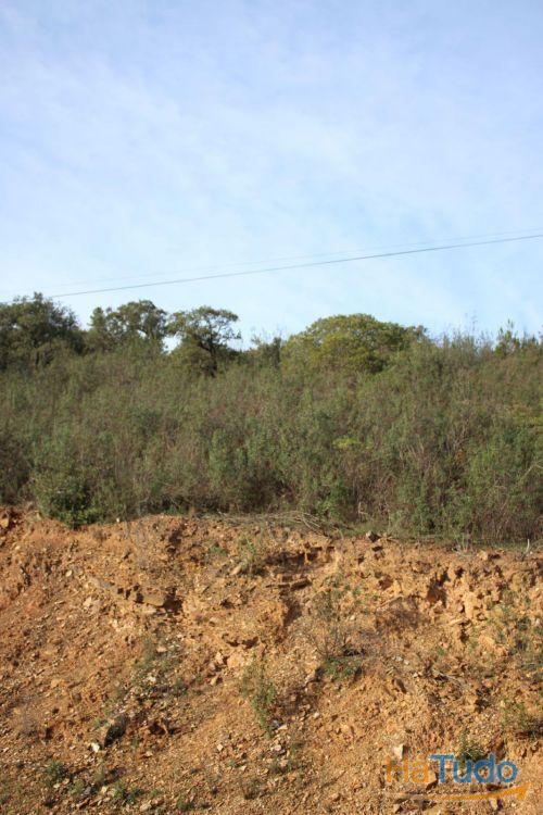 Terreno - para Venda - Alferce - Monchique