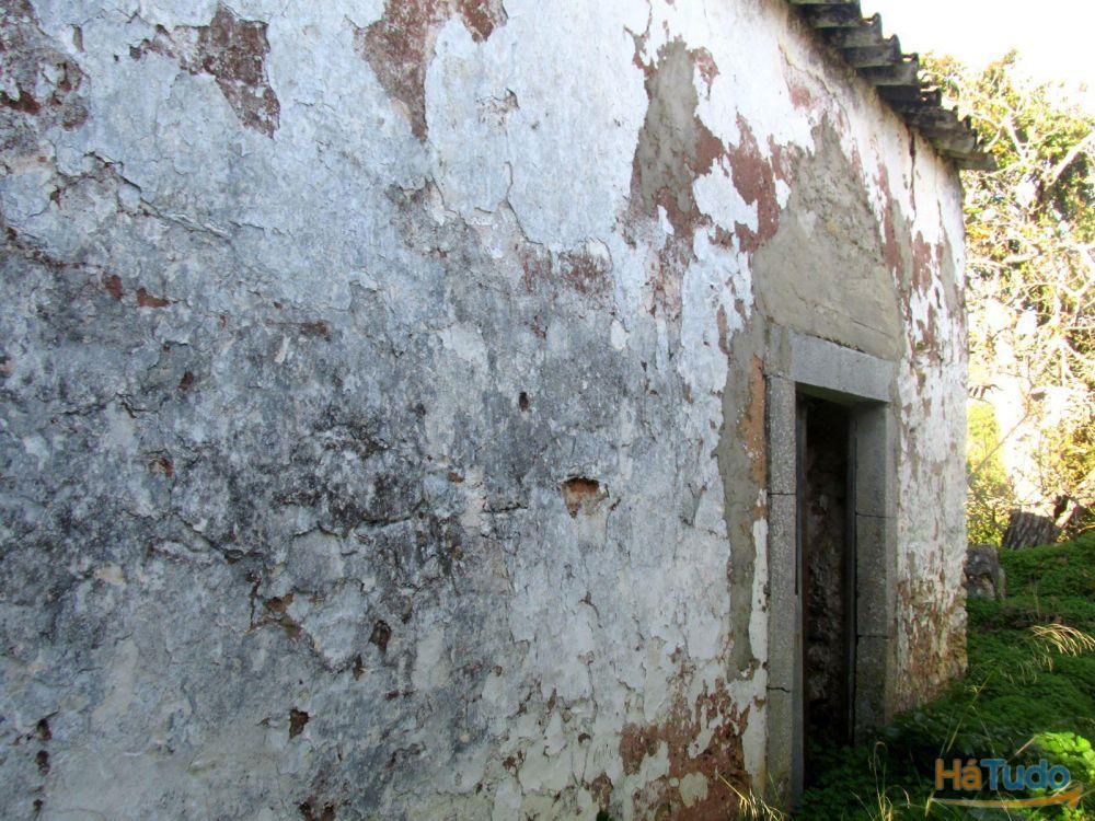 Quintinha Tipica Algarvia perto de São Brás de Alportel