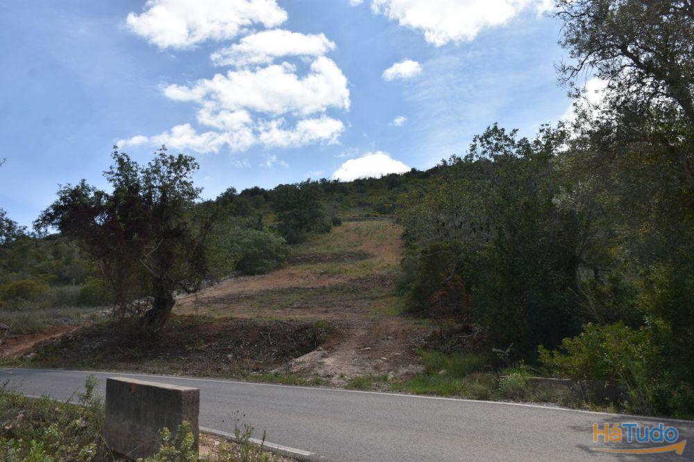Algarve, Faro, Albufeira, Boliqueime, terreno rustic, cultivável, bons acessos.