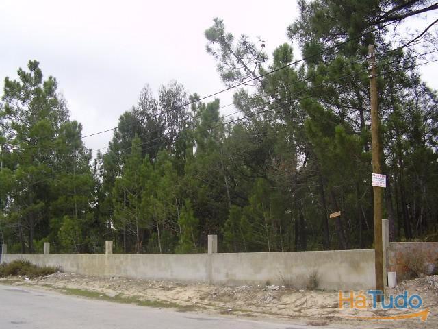 Terreno em  Palmela - Setúbal