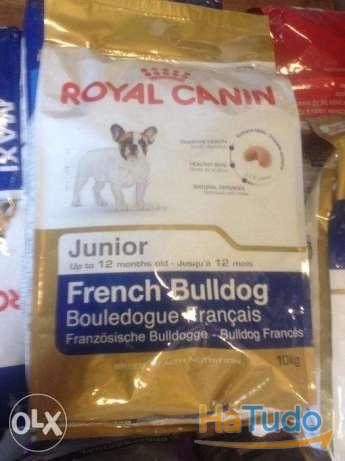 Royal Canin Bulldog Francês Junior e Adulto 10kg