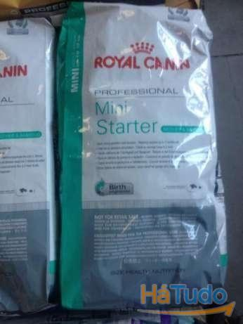 Royal Canin Mini Starter 20kg