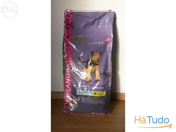 Eukanuba Puppy Large Breed 12kg