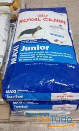 Royal Canin Maxi Junior 15kg - Portes Gratis